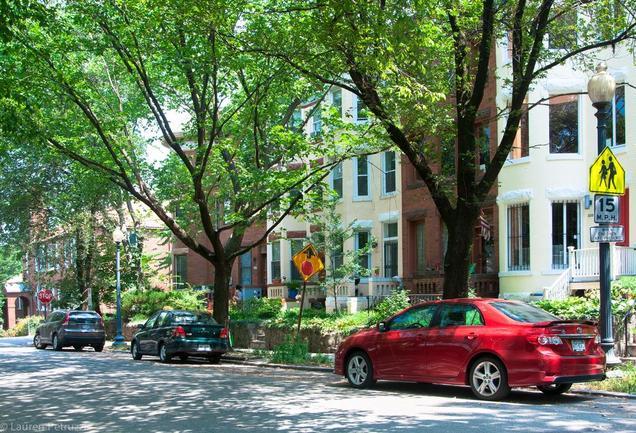 tree lined streets in neighborhood